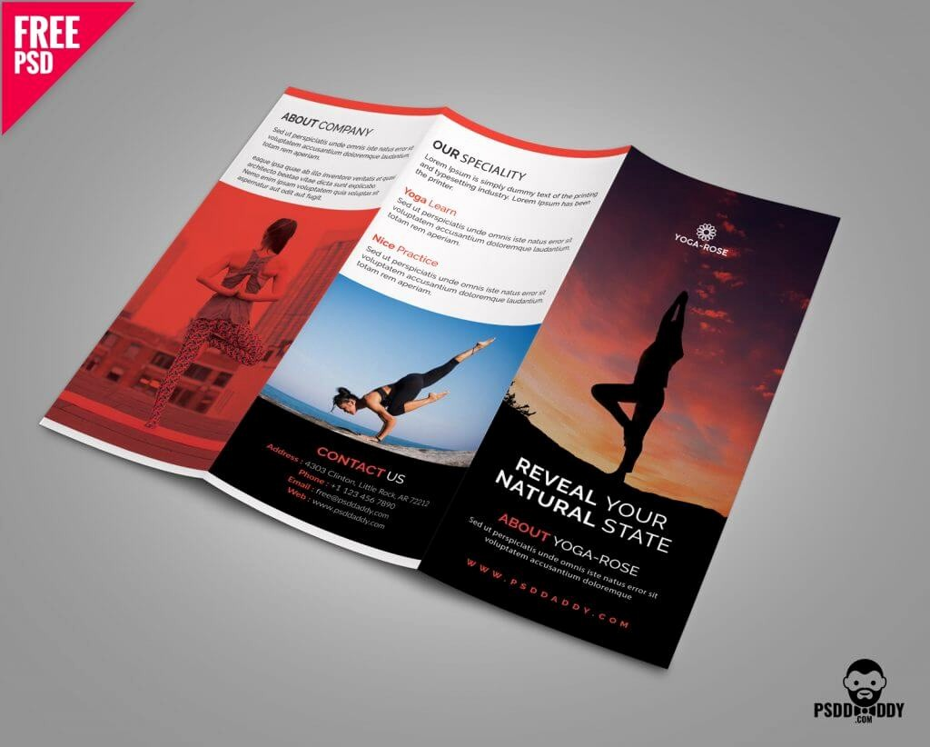 Tri-fold Brochure Examples New 40 Free Professional Tri Fold Brochures for Business