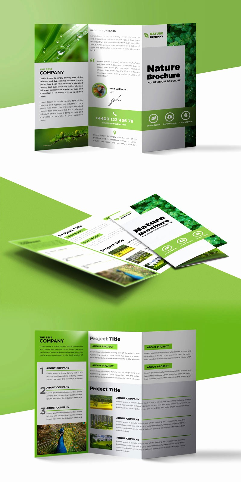 Tri-fold Brochure Examples Unique Nature Tri Fold Brochure Template Free Psd
