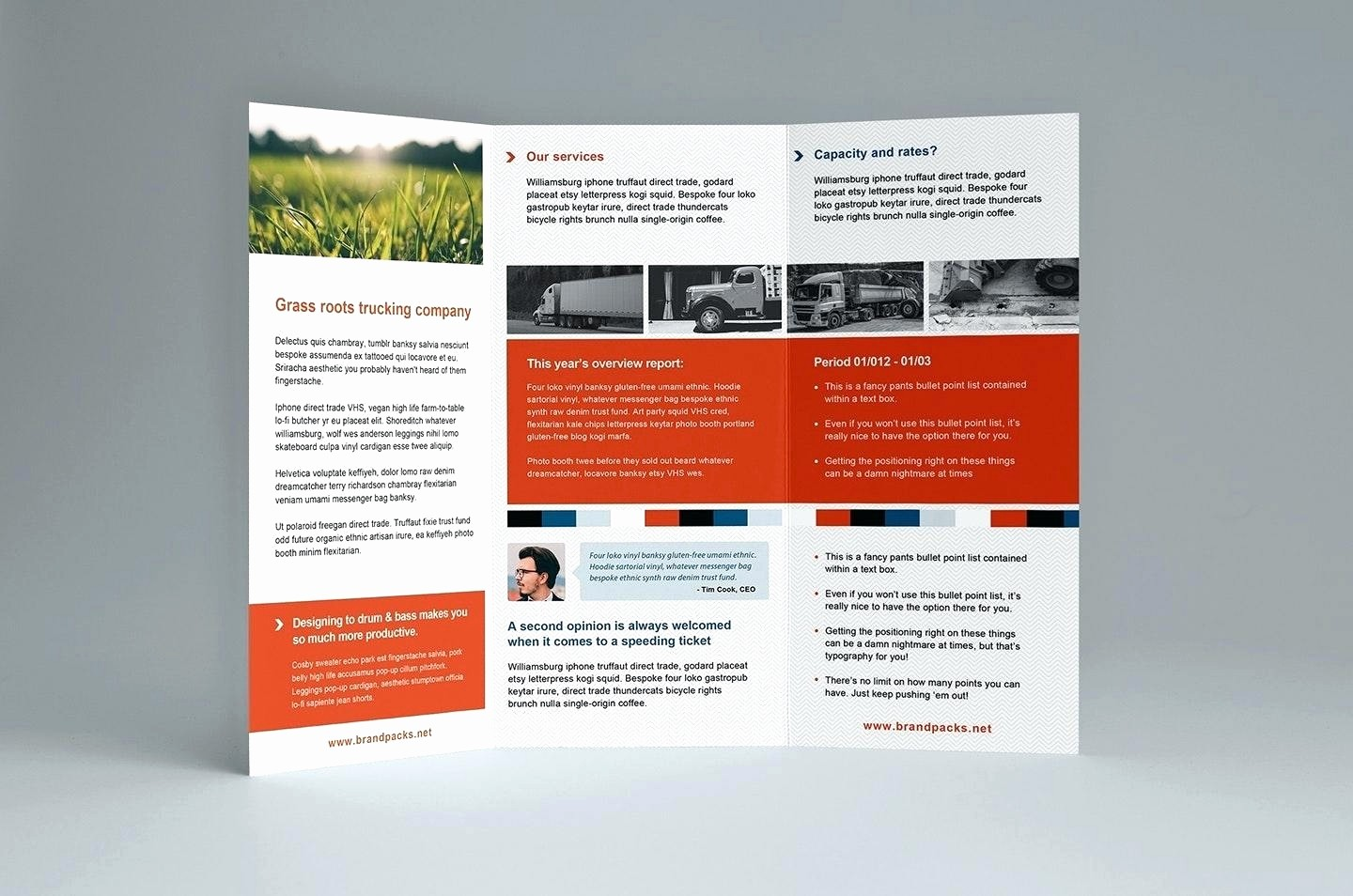 Tri Fold Brochure Template Powerpoint Fresh 50 Lovely Tri Fold Brochure Template Powerpoint