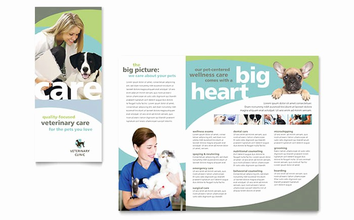Tri Fold Brochure Template Publisher Awesome Tri Fold Brochure Publisher Template toddbreda