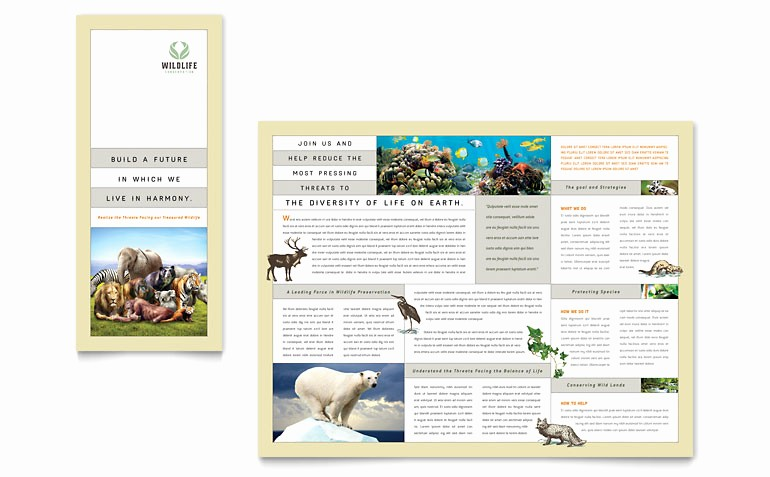 Tri Fold Brochure Template Publisher Best Of Nature & Wildlife Conservation Tri Fold Brochure Template