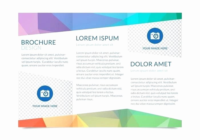 Tri Fold Template for Word Inspirational Free Three Fold Flyer Template Free Tri Fold Brochure