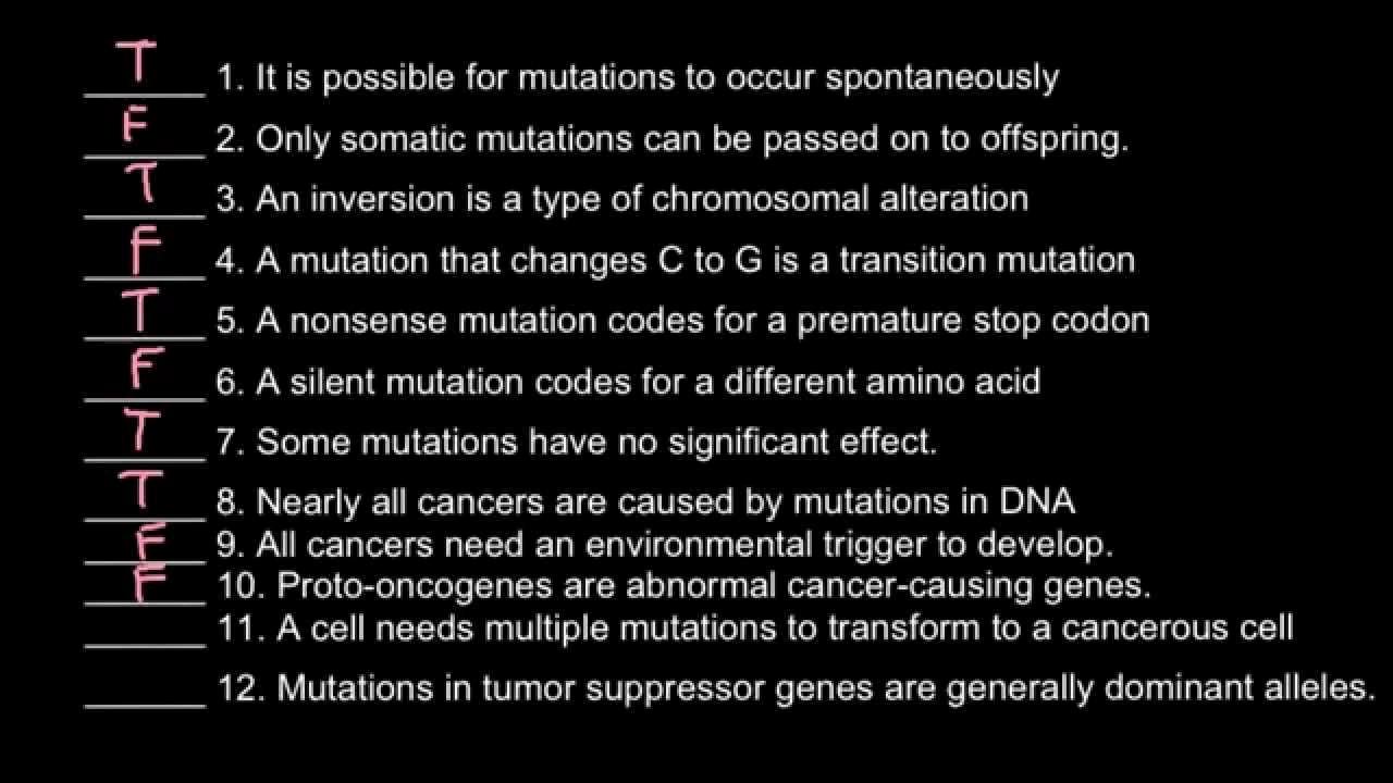 True or False Quiz Maker Beautiful Genetics and Mutations 12 True False Questions