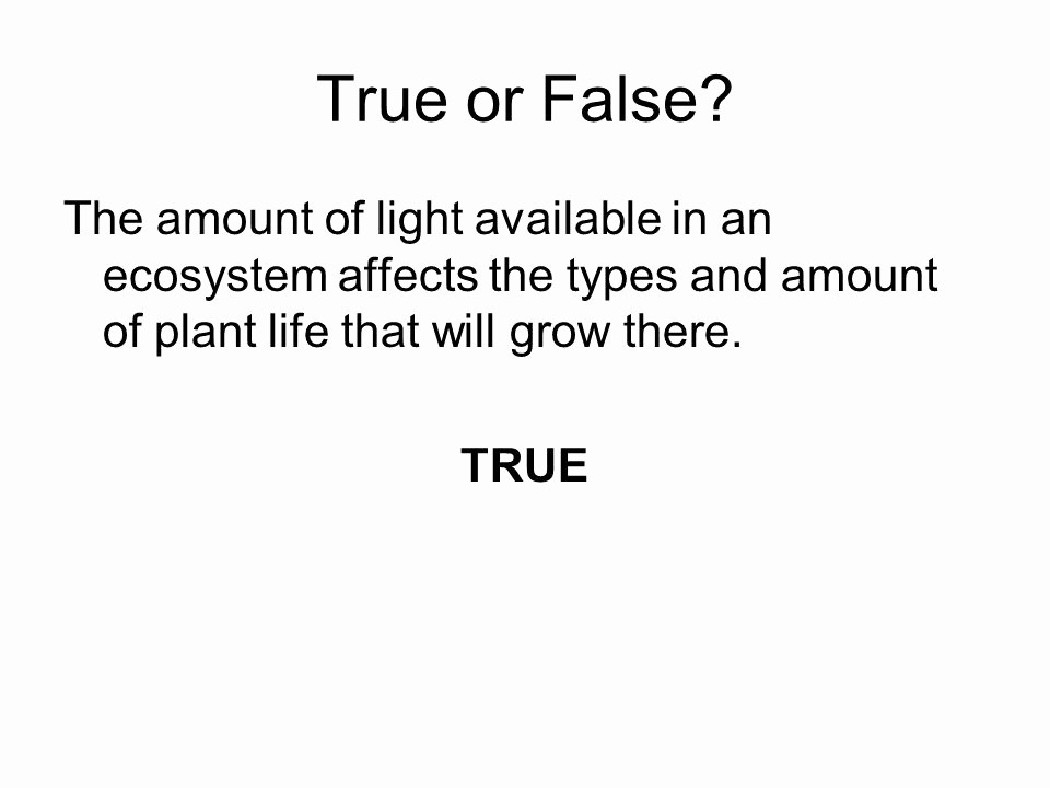 True or False Quiz Maker Unique Big Ecology Test tomorrow Ppt