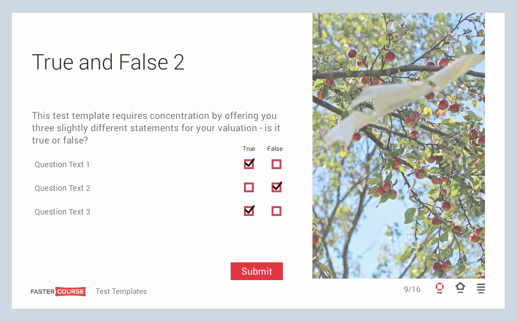 True or False Test Template Elegant Storyline Template Guide E Learning Templates Fastercourse