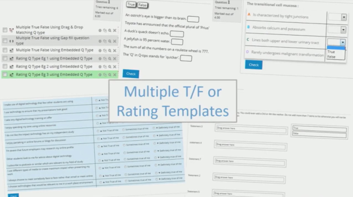 True or False Test Template Fresh Create Learning Objectives In Your Moodle Quiz Templates