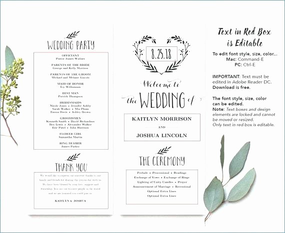 Wedding Programs Templates Free Download Lovely Printable Wedding Program Template Simple Programs