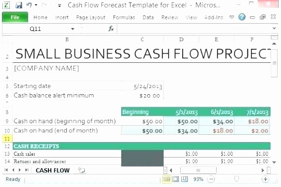 Weekly Cash Flow Projection Template Fresh Cash Flow Projection Excel Cash Flow Projection Example