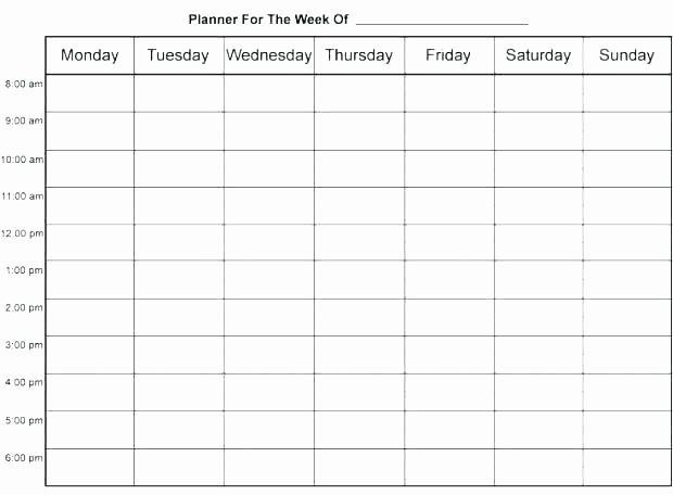 Weekly Hourly Planner Template Excel Luxury Hourly Agenda Template – Shiftevents