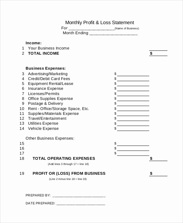 Weekly Profit and Loss Template Awesome 12 Sample Profit and Loss Statements