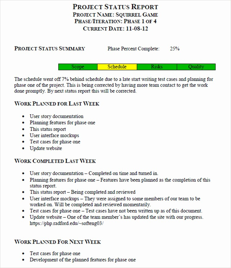 Weekly Project Status Report Templates Beautiful 6 Status Report Templates Free Word Pdf Excel formats