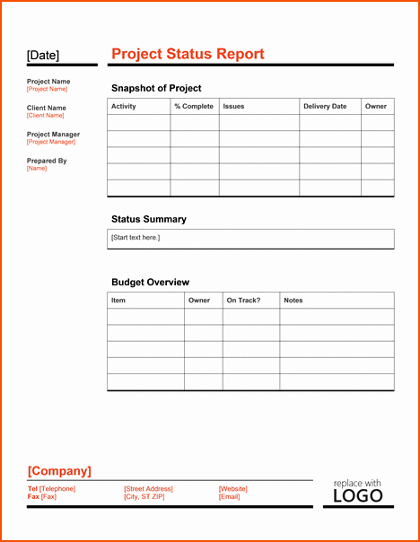 Weekly Project Status Report Templates Elegant 8 Project Status Template Bookletemplate