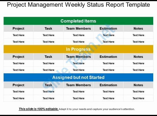 Weekly Team Status Report Template Best Of Project Management Weekly Status Report Template