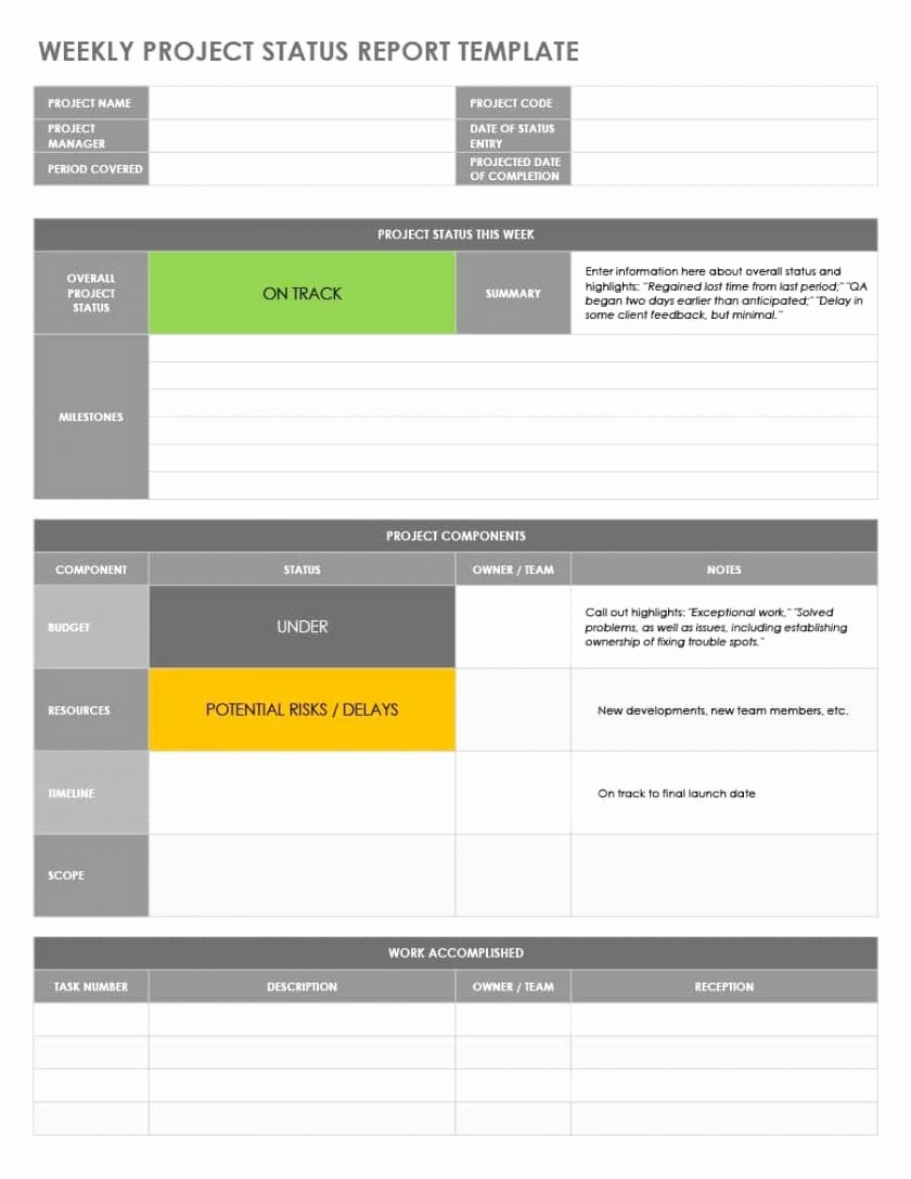 Weekly Team Status Report Template Unique Project Status Report Template