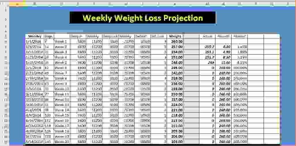 Weight Loss Challenge Chart Template New Weight Watcher Tracker Template Printable