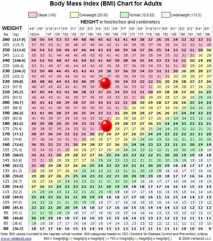 Weight Loss Chart for Women Best Of Weigh In Wednesday Week 27 Measurements Bmi and