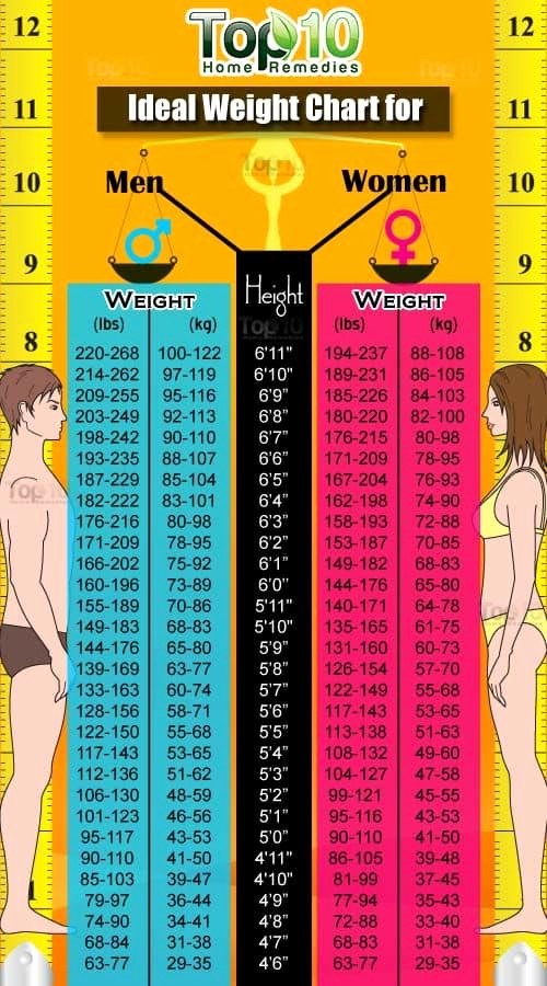Weight Loss Chart for Women Luxury Height and Weight Chart for Women and Men Bmi Calculator