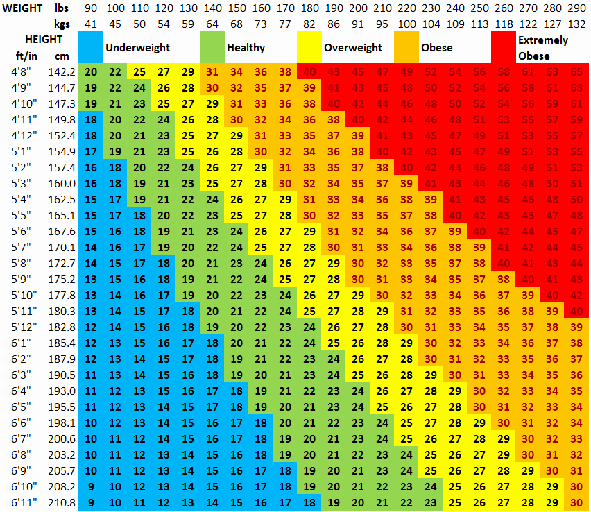 Weight Loss Chart for Women New Fitness Over 50 Start the Fit Apprentice Plan to Health