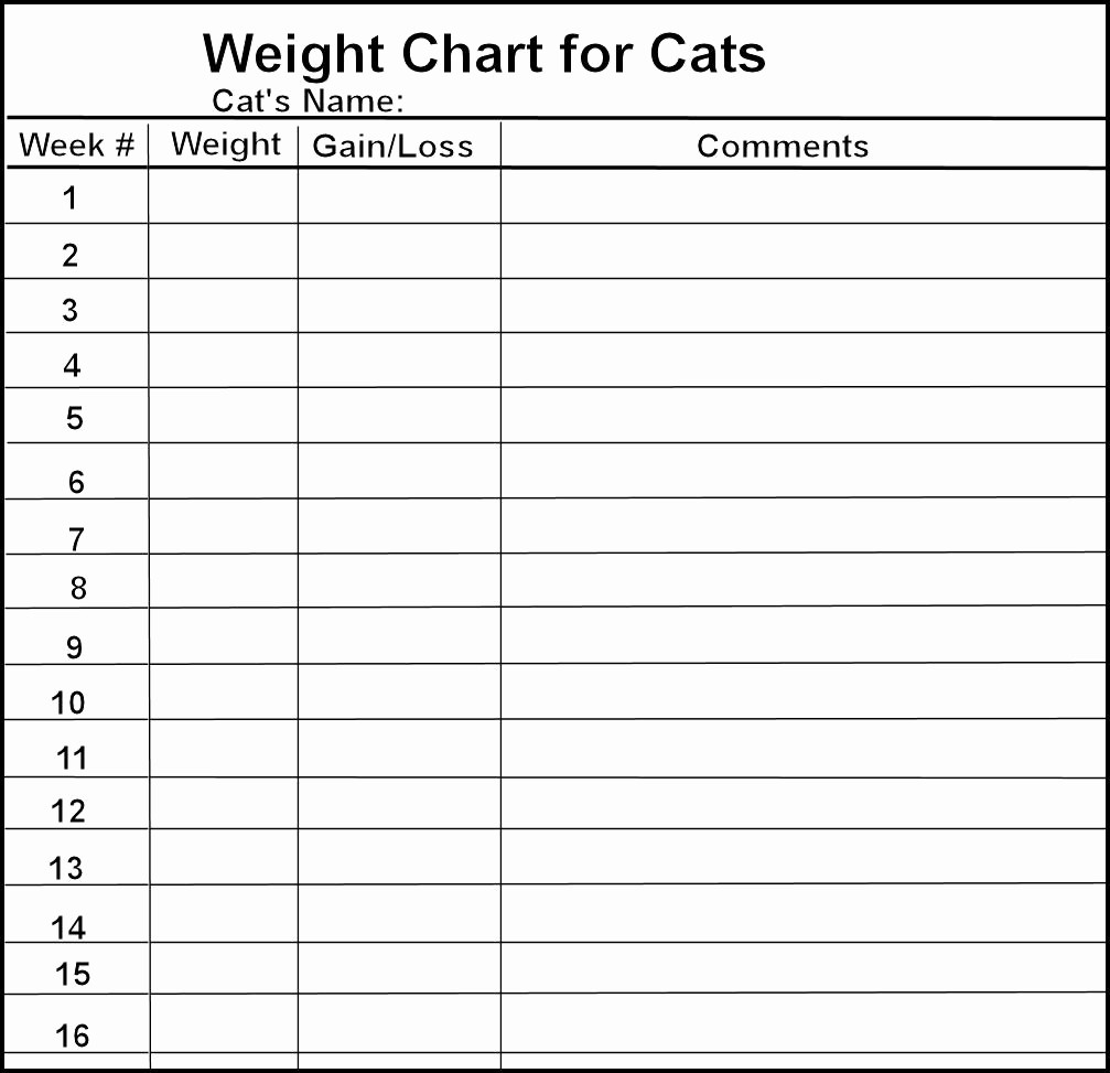Weight Loss Chart Printable Blank Awesome 8 Best Of Weight Loss Logs Charts Printable