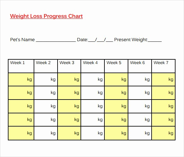 Weight Loss Chart Printable Blank Fresh 8 Sample Weight Loss Charts