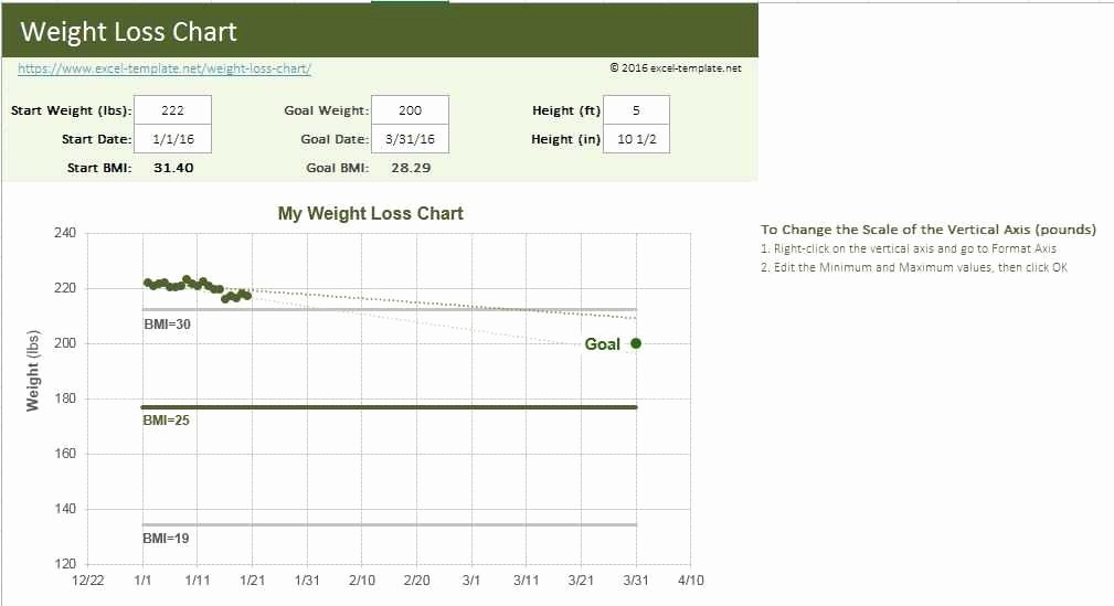 Weight Loss Spreadsheet Google Docs Inspirational Weight Loss Tracking Spreadsheet Elegant Printable Food
