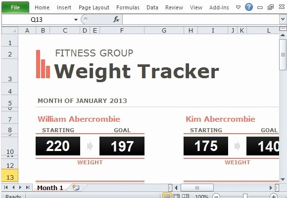 Weight Loss Tracker Excel Spreadsheet Elegant 17 Best Images About Excel Templates On Pinterest