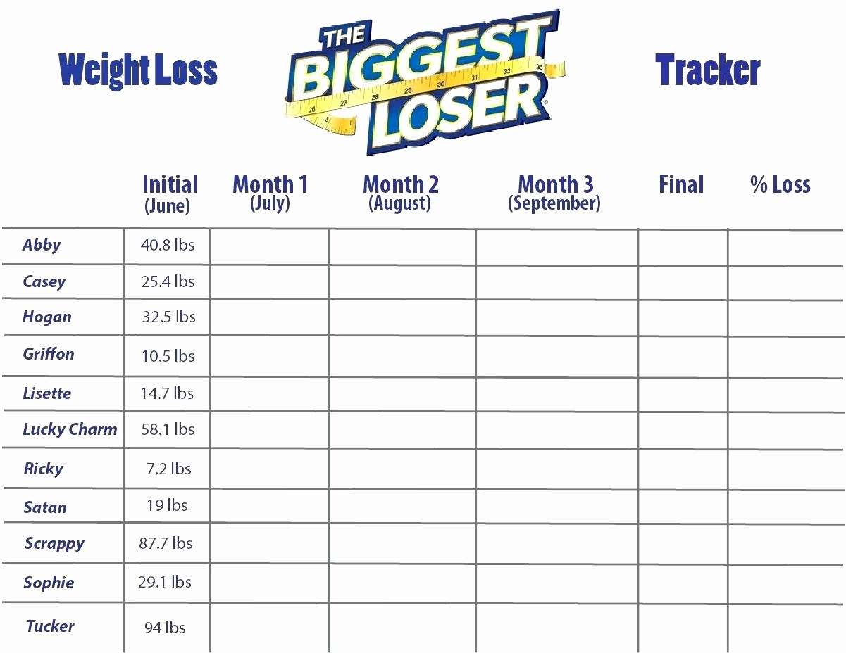 Weight Loss Tracker Excel Spreadsheet Luxury Template Weight Loss Tracker Template