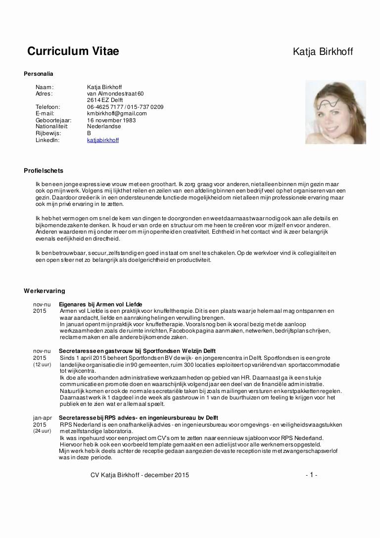 What is A Cv Word Beautiful Cv Katja Birkhoff Uitgebreidc