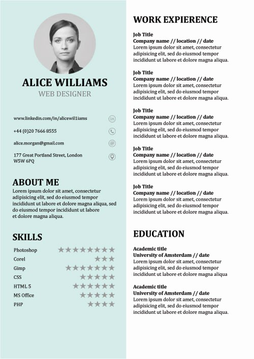 What is A Cv Word Elegant Resume Template