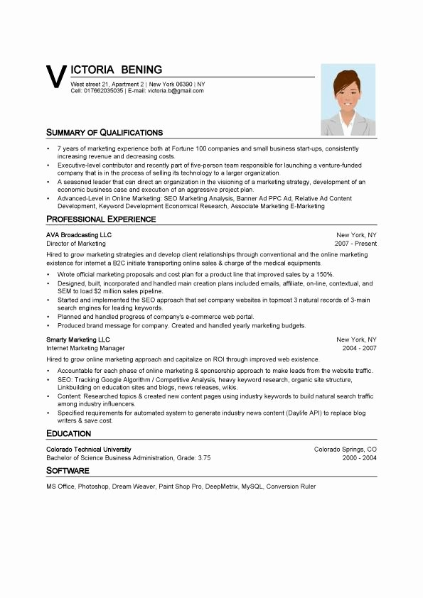 What is A Cv Word New 8 Resume Sample Word format