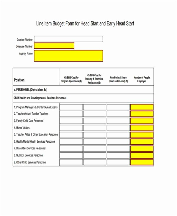 What is An Itemized Budget Inspirational Sample Line Item Bud forms 7 Free Documents In Word Pdf