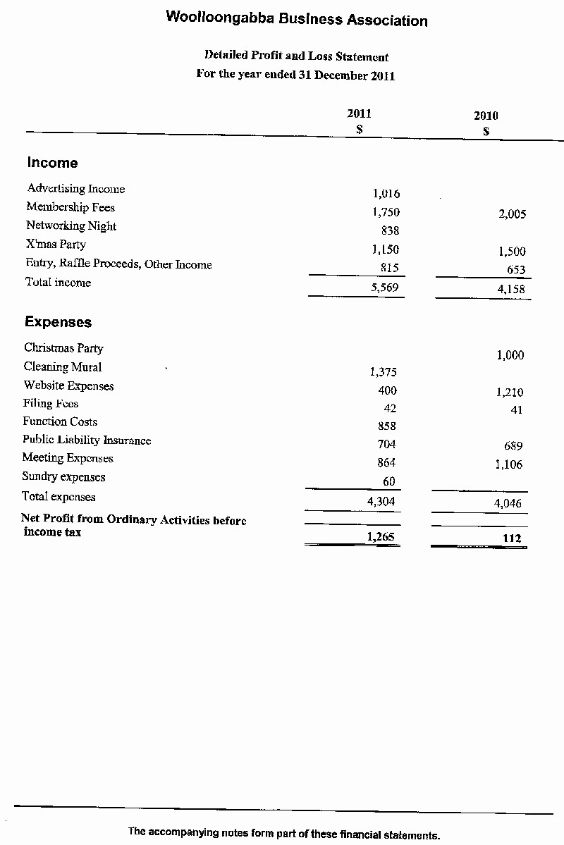 What is Profit and Loss Luxury Personal Financial Statement form 2012