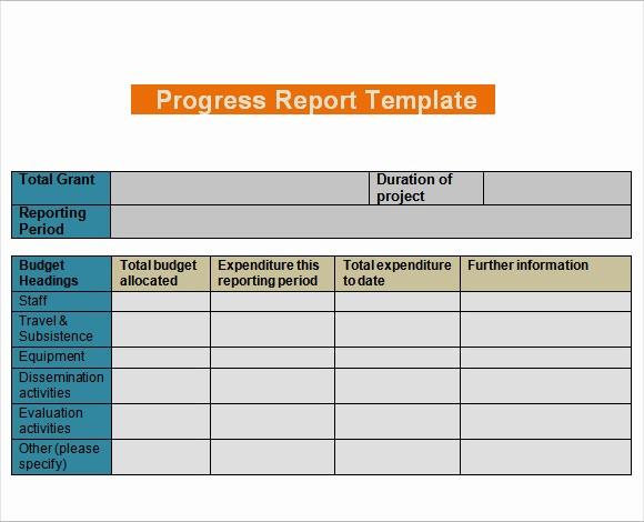 Work In Progress Template Excel Elegant 11 Sample Progress Reports