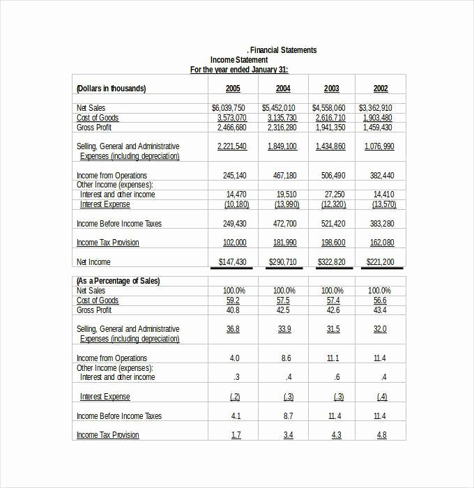Year End Financial Statement Template Beautiful 27 Financial Statement Templates Pdf Doc