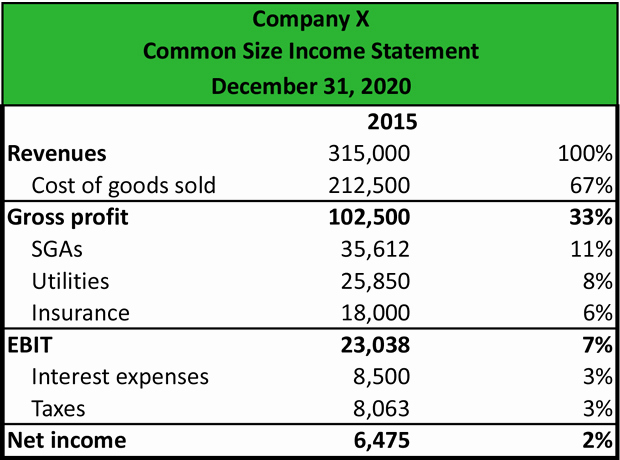 Common Size Income Statement Template Awesome What is A Mon Size In E Statement Definition