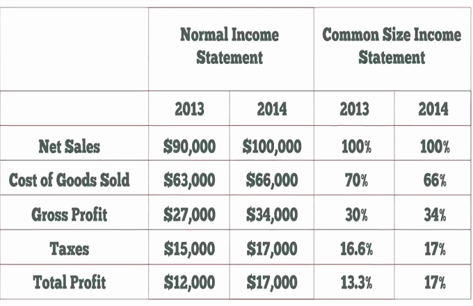 Common Size Income Statement Template Elegant Mon Size In E Statement Video