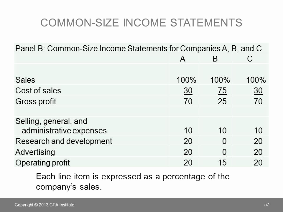 Common Size Income Statement Template Lovely Chapter 4 Understanding In E Statements Ppt
