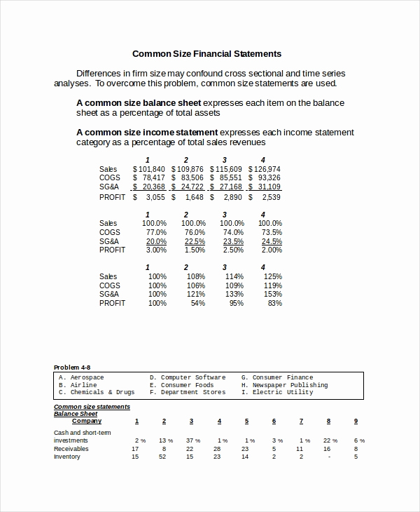 Common Size Income Statement Template Unique 17 Financial Statement Analysis Example