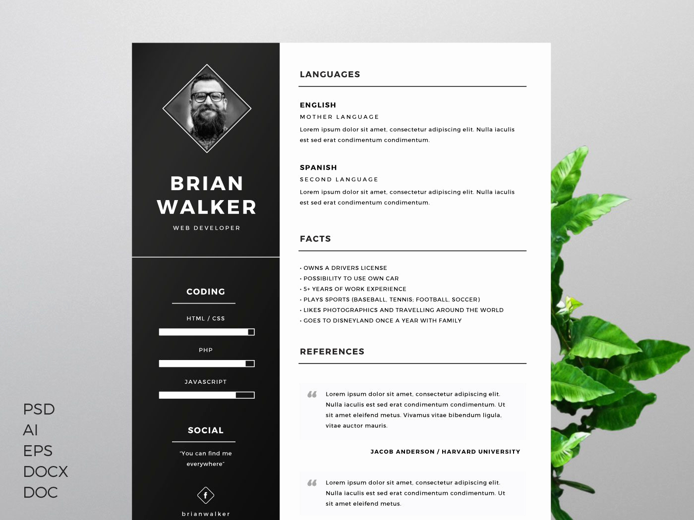 Creative Resume Template Word Elegant the Best Cv & Resume Templates 50 Examples