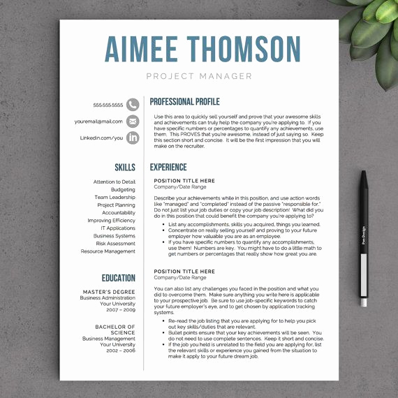 Creative Resume Template Word Fresh 142 Best Professional Resume Templates Images On Pinterest