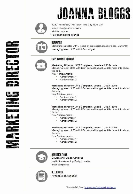 Curriculum Vitae Template Microsoft Word Beautiful Cv Samples Ms Word Pakistan