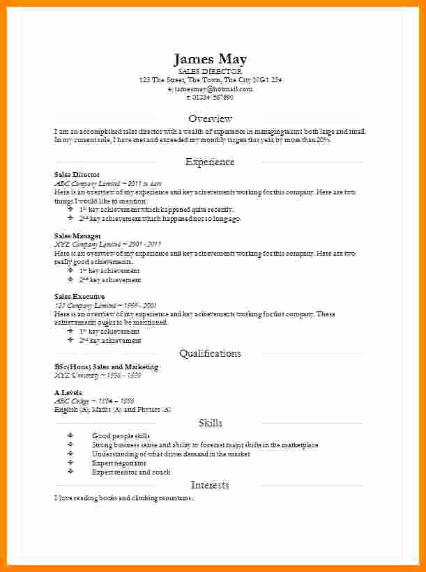 Curriculum Vitae Template Microsoft Word Elegant 8 Cv In Word Document