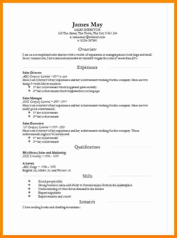 Curriculum Vitae Template Microsoft Word Elegant 8 Cv In Word Document