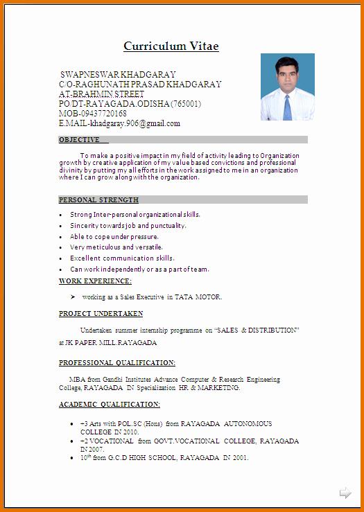Curriculum Vitae Template Microsoft Word Elegant Microsoft Word Template Cv Salonbeautyform