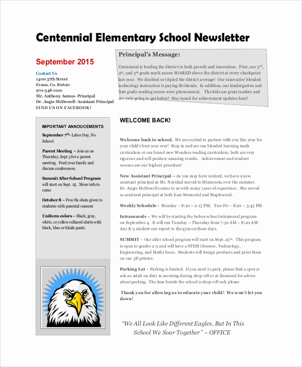 Elementary School Newsletter Template Luxury 8 Sample School Newsletters