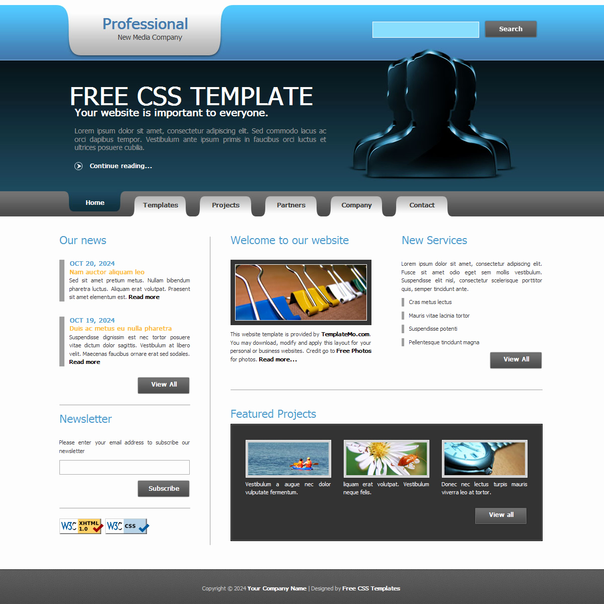 Free Professional Website Templates Awesome Free Template 156 Professional