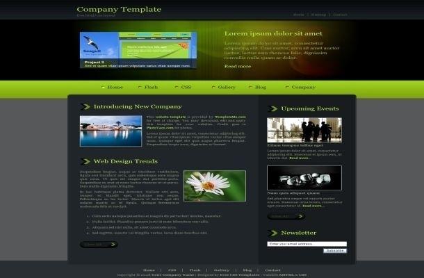 Free Professional Website Templates Unique Professional Website Templates Free Download HTML with Css