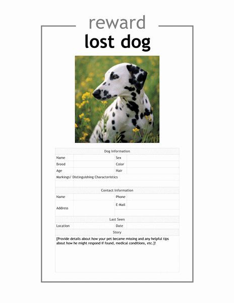 Missing Dog Flyer Template Awesome Affidavit Template Lost Documents Templates Resume