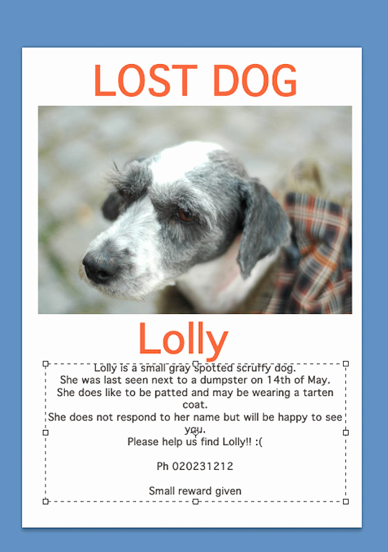Missing Dog Flyer Template Awesome How to Make Lost Pet Signs with Wikihow