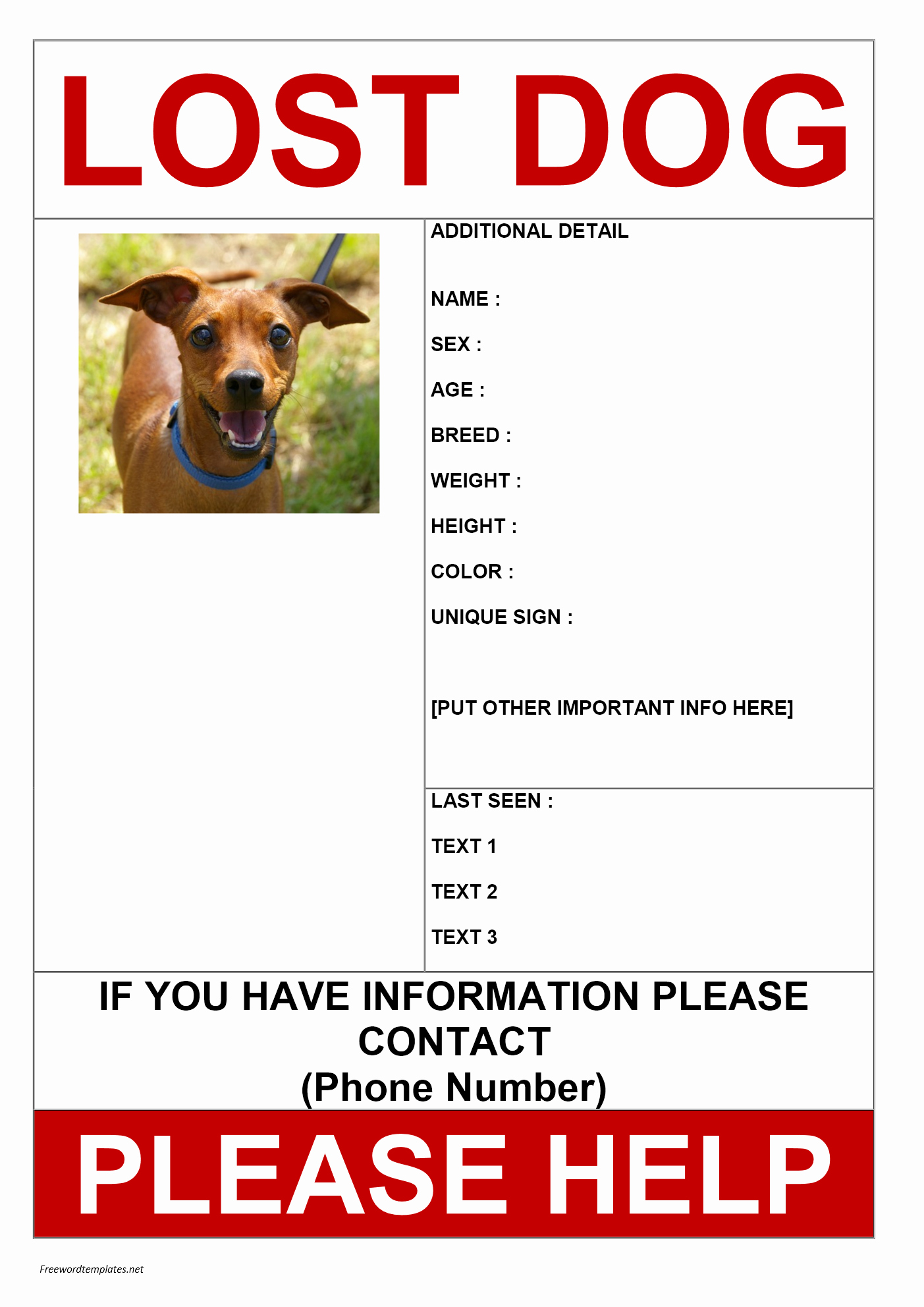Missing Dog Flyer Template Beautiful Missing Dog Poster
